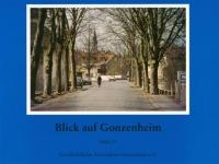 Blick auf Gonzenheim